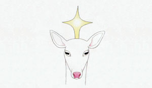 Albino Fawn Productions